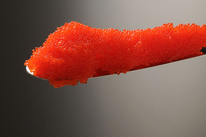 Uova di lompo definition warenkunde lebensmittelkunde for Uova di pesce rosso
